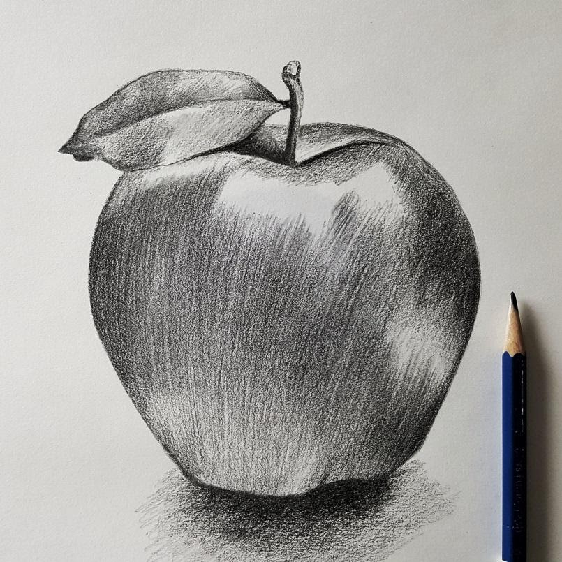 الرسم والتظليل