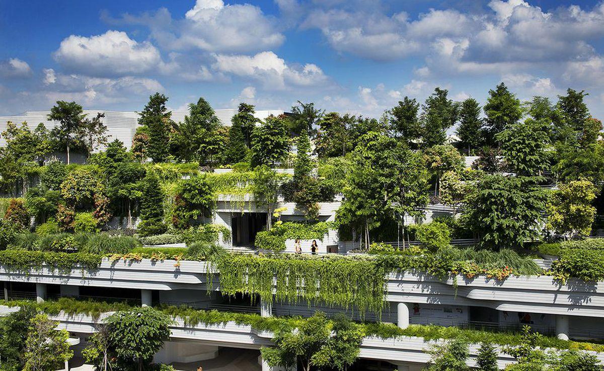 العمارة الخضراء